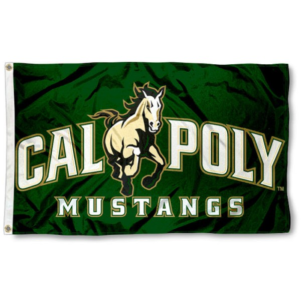 Cal Poly Mustangs 3x5 Flag is made of 100% nylon, offers quad stitched flyends, measures 3x5 feet, has two metal grommets, and is viewable from both side with the opposite side being a reverse image. Our Cal Poly Mustangs 3x5 Flag is officially licensed by the selected college and NCAA.