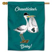 Coastal Carolina Chanticleers New Baby Flag