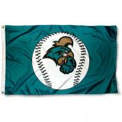 Coastal Carolina University Baseball Flag