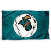 Coastal Carolina University Baseball Flag