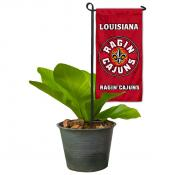 Louisiana Lafayette Ragin Cajuns Flower Pot Topper Flag