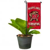 Maryland Terrapins Flower Pot Topper Flag