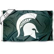 Michigan State University Large 4x6 Flag