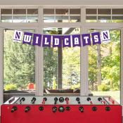 Northwestern Wildcats Banner String Pennant Flags