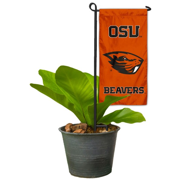 """Oregon State Beavers Flower Pot Topper Flag kit includes our 4""""x8"""" mini garden banner and 6"""" x 14"""" mini garden banner stand. The mini flag is made of 1-ply polyester, has screen printed logos and the garden stand is made of steel and powder coated black. This kit is NCAA Officially Licensed by the selected college or university."""