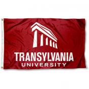 Translyvania Pioneers Wordmark Flag