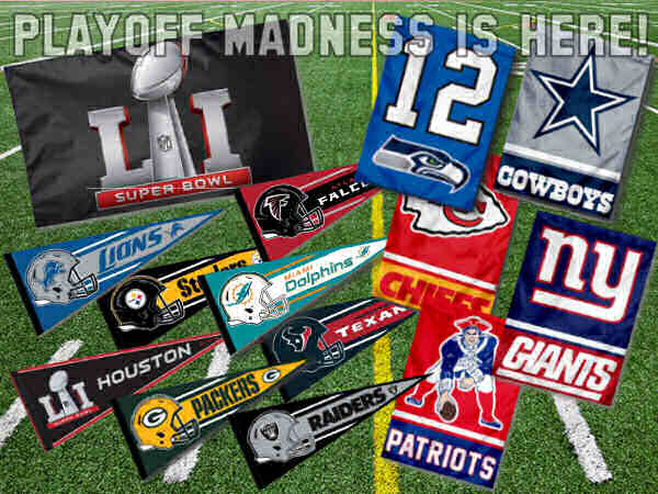 Super Bowl LI 51 Flags and Banners