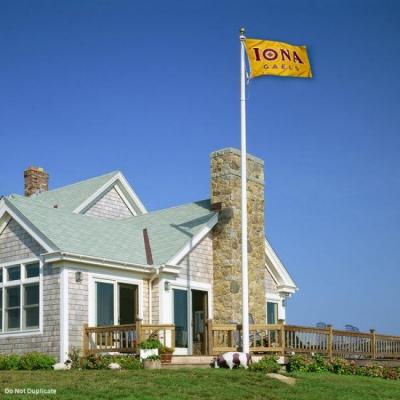 Mary/'s College Gaels Garden Flag Yard Banner St